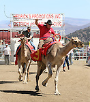 Ryan Gillaspie, front, and Shane Harrington race in the 51st Annual Virginia City International Camel Races in Virginia City, Nev. on Sept. 10, 2010..Photo by Cathleen Allison