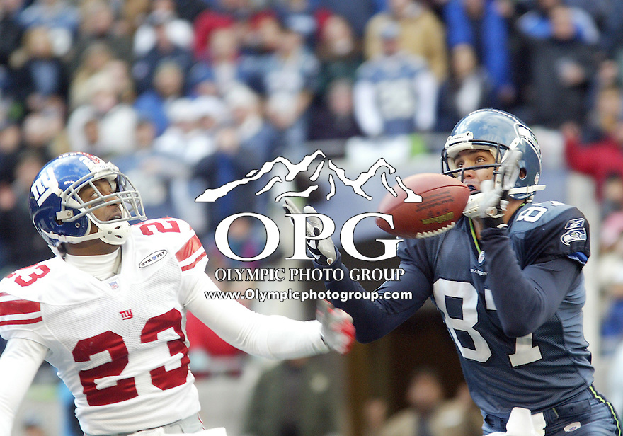 27 Nov 2005:  Seattle Seahawks wide receiver Joe Jurevicius pulls in a Matt Hasselbeck pass just out of the reach of New York Giants cornerback #23 Corey Webster during the first quarter at Quest Field in Seattle, WA.