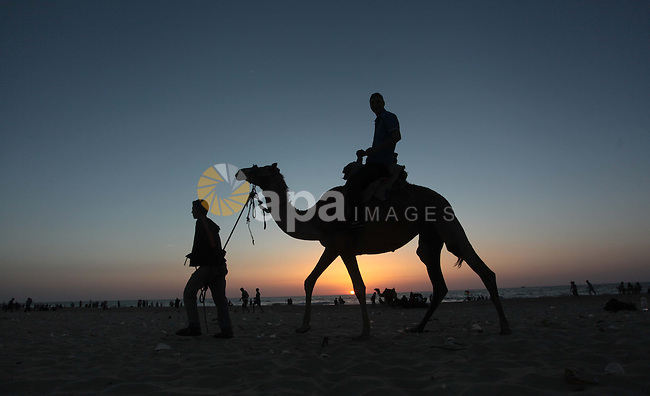 A Palestinian man rides a camel on a beach in Gaza City May 2, 2014. Photo by Ashraf Amra