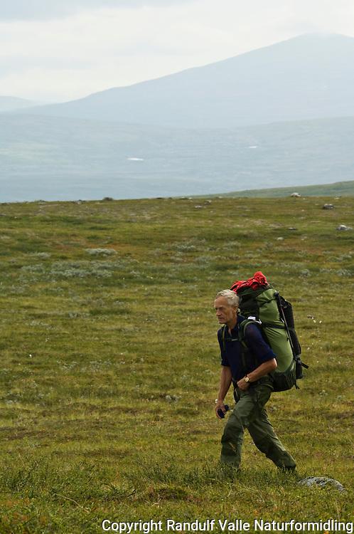 Mann går til fots på fjellvidde ---- Man hiking with back pack