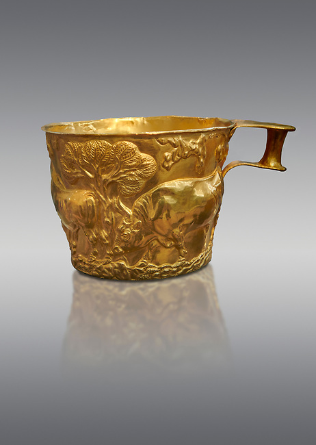 Vapheio type Mycenaean gold cup depicting a wild bull hunt , Vapheio Tholos Tomb, Lakonia, Greece. National Archaeological Museum of Athens.  Grey Background<br /> <br /> <br />  Two masterpieces of Creto - Mycenaean gold metalwork were excavated from a tholos tomb near Lakonia in Sparta in 1988. Made in the 15th century BC, the gold cups are heavily influenced by the Minoan style that was predominant in the Agean at the time. The bull hunt was popular with  Mycenaean  and Minoan artists and symolised power and fertility. The distinctive shape of the cup is kown as 'Vapheio type'.