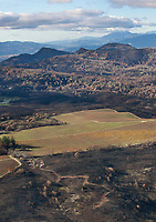 A vineyard serves as a firebreak, Atlas Fire, Napa County, California, northern California wildfires, 2017.