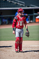 Cincinnati Reds catcher Morgan Lofstrom (34) on defense during an Instructional League game against the Kansas City Royals on October 2, 2017 at Surprise Stadium in Surprise, Arizona. (Zachary Lucy/Four Seam Images)