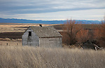 Idaho, North Central, Idaho County, Grangeville. Old outbuildings on a abandoned homestead in winter.