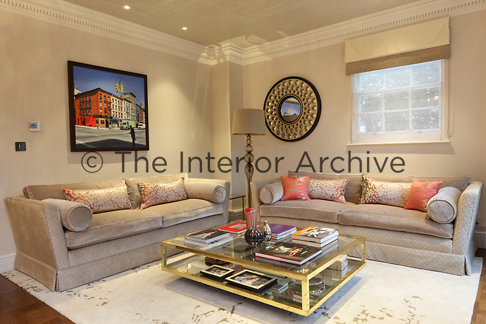A family living room furnished with two velvet covered sofas dressed in mottled cushions