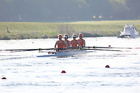 Race: 6  Event: W Challenge 4-  Heat B<br /> <br /> Wallingford Regatta 2018<br /> <br /> To purchase this photo, or to see pricing information for Prints and Downloads, click the blue 'Add to Cart' button at the top-right of the page.