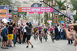 Maglia Ciclamino Elia Viviani (ITA) Quick-Step Floors wins Stage 3 of the 101st edition of the Giro d'Italia 2018 running 229km flat stage from Be'er Sheva to Eilat is the last in Israel. 6th May 2018.<br /> Picture: LaPresse/Marco Alpozzi | Cyclefile<br /> <br /> <br /> All photos usage must carry mandatory copyright credit (&copy; Cyclefile | LaPresse/Marco Alpozzi)