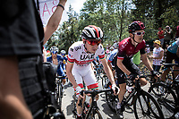 peloton with Geraint Thomas (GBR/Ineos) & Daniel Martin (IRE/UAE-Emirates) up the Mur d'Aurec-sur-Loire (3.2km at 10.8%)<br /> <br /> Stage 9: Saint-Étienne to Brioude (170km)<br /> 106th Tour de France 2019 (2.UWT)<br /> <br /> ©kramon