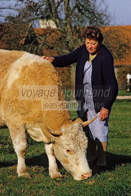 Europe/France/Bourgogne/21/Côte d'Or/Env d'Epoisses: Vache pie rouge de l'Est dont le lait sert à préparer le fromage d'Epoisses AOC