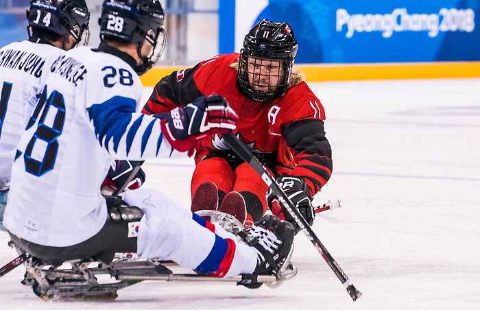 PyeongChang 15/3/2018 - Adam Dixon (#11), of Midland, ON,  in action as Canada takes on Korea in semifinal hockey action at the Gangneung Hockey Centre during the 2018 Winter Paralympic Games in Pyeongchang, Korea. Photo: Dave Holland/Canadian Paralympic Committee