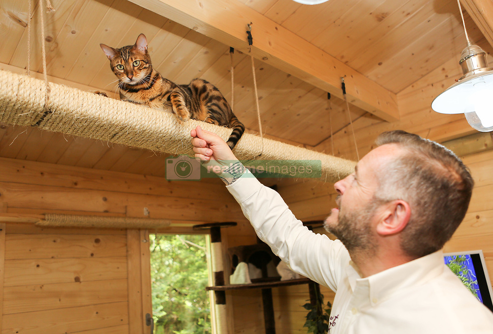 EXCLUSIVE Hotel Kitty in Kent claims to be Britain's most lavish