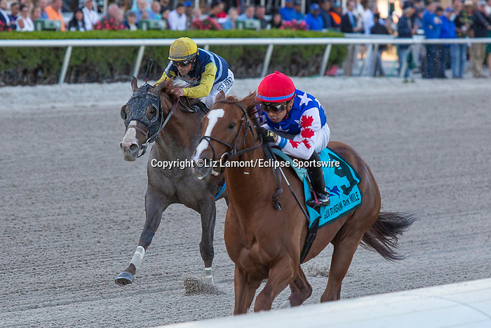 February 29, 2020: #9 Mr Freeze with jockey Manuel Franco on board, wins the Gulfstream Park Mile G2 on February 29th, 2020 at Gulfstream Park in Hallandale Beach, Florida. LizLamont/Eclipse Sportswire/CSM
