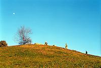milano, parco monte stella --- milan, monte stella park