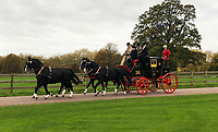 BNPS.co.uk (01202 558833)<br /> Pic: MarkBroadbent/BNPS<br /> <br /> Mark Broadbent took the finished carriage up to Windsor Castle to show the Queen earlier on this year.<br /> <br /> Last Post - Britain's last Royal Mail carriage, that bizarrely once survived an attack by a lion outside Salisbury, has been saved for the nation.<br /> <br /> The 200-year-old horse-drawn carriage harks back to the golden age of the Royal Mail when crowds gathered along the route to see the lightning-quick service thunder by.<br /> <br /> The restored four horse coach was known as 'Quicksilver' as it was the fastest in the land on its regular 21 hour run from Devonport, Devon, to London.<br /> <br /> But the red and black wooden wagon went down in history for an extraordinary incident involving a lion in the English countryside in 1816.