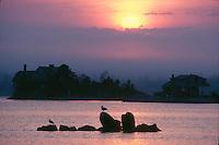 Thimble Island sunrise, Branford, CT