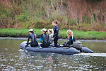 Earthwatchers Looking For Animal Activity