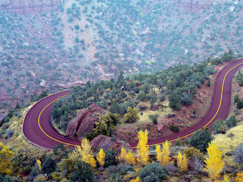 Road with fall color in Zion National Park, Utah