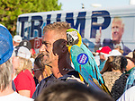 PANAMA CITY BEACH,FL- OCTOBER 11: Neal Hagen and his blue and gold macaw wait in line for a U.S. Republican presidential candidate Donald Trump rally at Pier Park Amphitheater in Panama City Beach, Florida on October 11, 2016 .  (Photo by Mark Wallheiser/Getty Images)