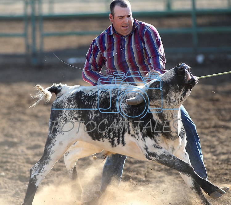 Joel Kruger competes in the double mugging event at the Minden Ranch Rodeo on Saturday, July 23, 2011, in Gardnerville, Nev. .Photo by Cathleen Allison