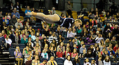 Northern European Gymnastics 2012