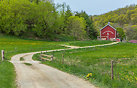 Iowa County, Wisconsin: Curving gravel road leads to the Cates barn (1893), early spring