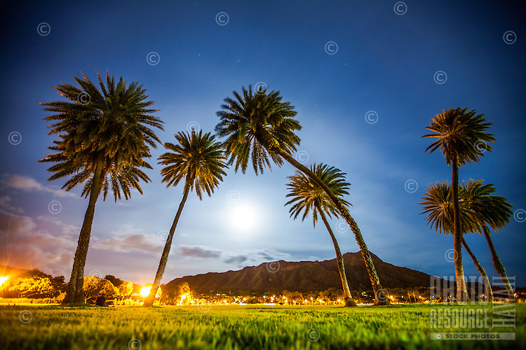 A full moon rises behind Diamond Head, with palm trees in the foreground, Honolulu, O'ahu.