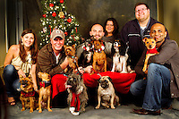 Nine dogs and their people are photographed at a Muttmixer holiday party thrown by City Dog magazine in Seattle, WA on December 09, 2010. (photo by Karen Ducey)