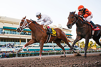 HALLANDALE BEACH, FL - MARCH 018: #6 Distinta with John Velazquez up gets up late to win the Inside Information Stakes (G2) over #5 Dearest ridden by Edgar Prado at Gulfstream Park, Hallandale Beach, FL. (Photo by Arron Haggart/Eclipse Sportswire/Getty Images)