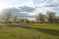 OR_LOCATION_45137