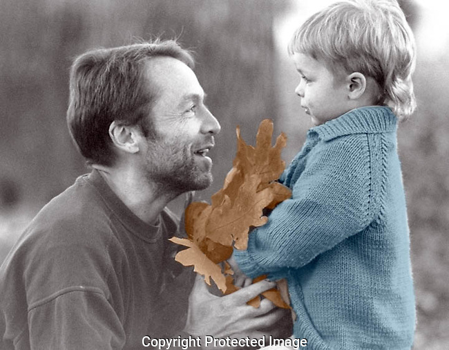 Autumnal Bouquet: Sean Olson, 3, presents his father Andy with an autumnal bouquet of oak leaves in Madison, Wisconsin's Orton Park.