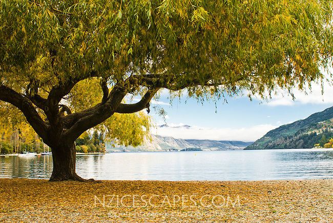 Lake Wakatipu in autumn - Central Otago, Queenstown, New Zealand