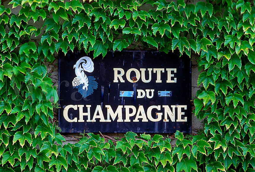 Route to champagne sign in France surrounded by ivy leaves