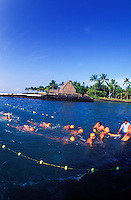 Swimmers at the finish line at the annual Ironman Triatholon in Kailua-Kona with ahuena heiau in background.