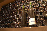In the bottle aging wine cellar, bottles lying down and two standing with a label saying Opera Prima 94 (the first work) 234 bottles. Bodega Pisano Winery, Progreso, Uruguay, South America