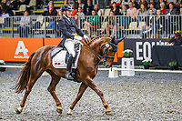 Peter Barke rides Parkridge Donnamour during the EQUITANA Auckland Inter 1 Freestyle to Music. 2019 Equitana Auckland. ASB Showgrounds. Auckland. New Zealand. Friday 22 November. Copyright Photo: Libby Law Photography