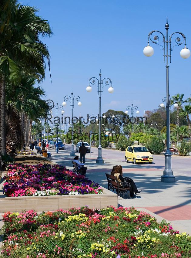 CYPRUS, Larnaca: palm-lined sea-front promenade<br />