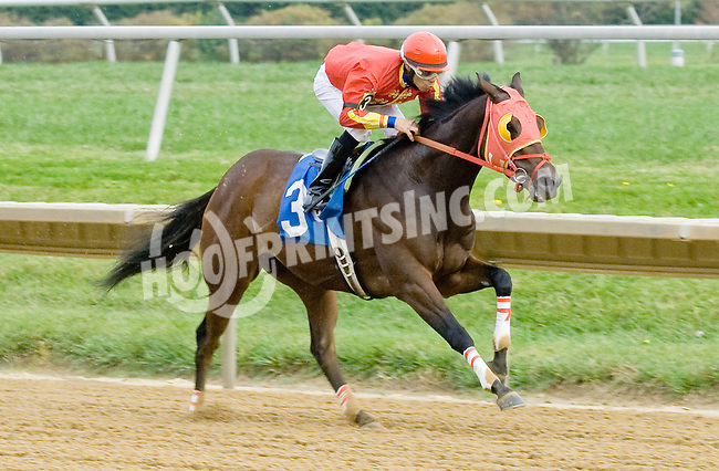 Cusabo winning at Delaware Park on 10/27/12..