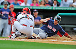 8 March 2012: Boston Red Sox outfielder Alex Hassan is tagged out sliding home during a Spring Training game against the St. Louis Cardinals at Roger Dean Stadium in Jupiter, Florida. The Cardinals defeated the Red Sox 9-3 in Grapefruit League action. Mandatory Credit: Ed Wolfstein Photo