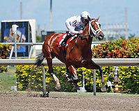 Gemologist with jockey Javier Castellano up winning his 2012 debut by 7 lengths. Gulfstream Park. Hallandale Beach, Florida. 03-16-2012