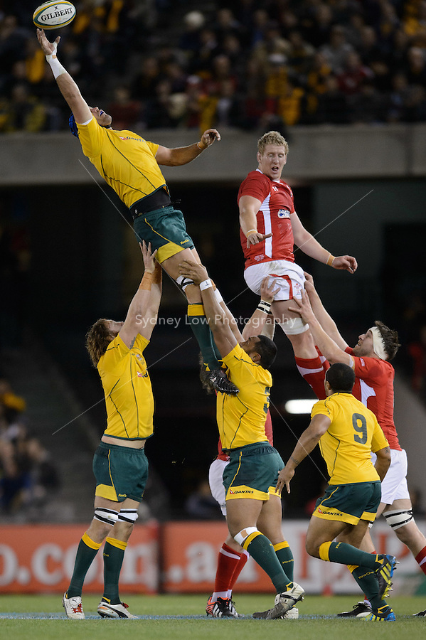 MELBOURNE, AUSTRALIA - JUNE 16: Nathan Sharpe of the Wallables catches the ball during the 2nd match of the Castrol Edge Rugby series between the Australian Wallabies and Wales at Etihad Stadium. (Photo Sydney Low / sydlow.com)..Contact zumapress.com for editorial licensing.