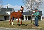 Genuine Risk - 1980 Kentucky Derby winner, at Newstead Farm in April 2005