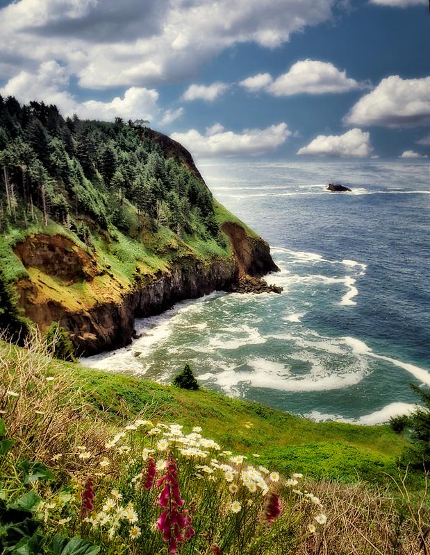 Coastline and flowers at Otter Rock, Oregon.