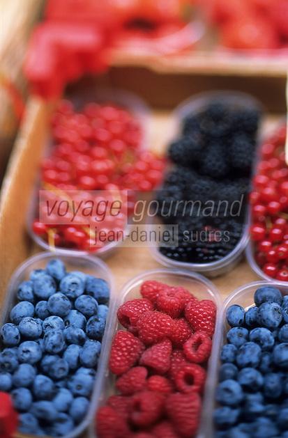 Europe/Italie/Emilie-Romagne/Bologne : Marché via Pescherie Vecchi - Etal fruits rouges