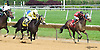 Allied Kid winning at Delaware Park on 6/6/16