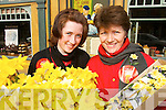HELPING HAND: Martina and Kitty Madden from Ballydonoghue  who were some of the volunteers on the streets of Listowel raising funds for cancer during Daffodil Day on Friday last.