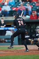 Logan Taylor (24) of the Louisville Cardinals at bat against the Notre Dame Fighting Irish in Game Eight of the 2017 ACC Baseball Championship at Louisville Slugger Field on May 25, 2017 in Louisville, Kentucky. The Cardinals defeated the Fighting Irish 10-3. (Brian Westerholt/Four Seam Images)