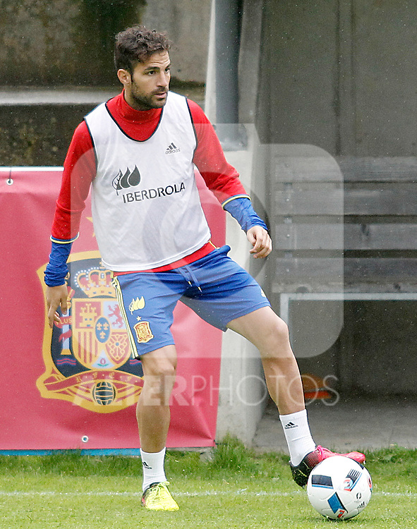 Spain's Cesc Fabregas during preparing training stage to Euro 2016. May 30,2016.(ALTERPHOTOS/Acero)