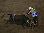 Bull Fighters perform during Wolf Pack Night at the Reno Rodeo on Wednesday, June 22, 2016.
