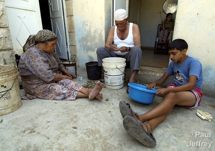 A family shells almonds in the West Bank village of Aboud.