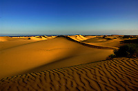 Sand dunes Maspalomas, Gran Canaria, Canary Islands, Spain.
